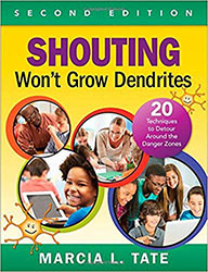 Shouting Won't Grow Dendrites CP7802